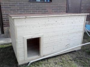 будка-для-собаки